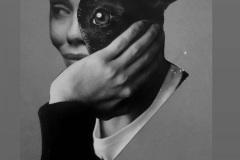 Maria Fernanda Carmignotto,Ob_ser, colagem, 2021