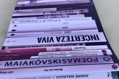 Antibiblioteca-3