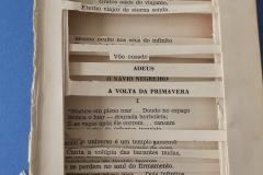livro_-alterado-1_Iara-Carvalho-_-conteudo