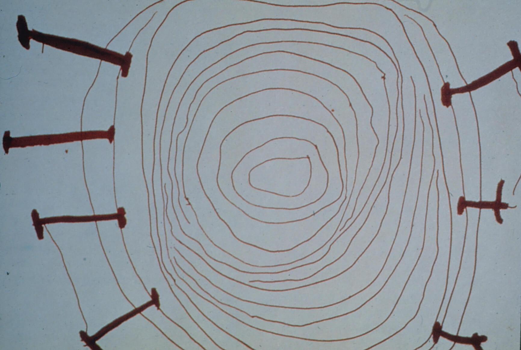 curso histórias para manter o céu suspenso_ Povo Yanomami. O céu e seus pés